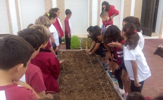 projecte-deducacio-agricola